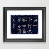Strange And Seldom Anima… Framed Art Print