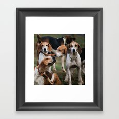Foxhounds Framed Art Print