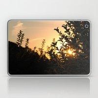 Apple Orchard At Sunset Laptop & iPad Skin