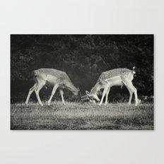 Challenge Canvas Print