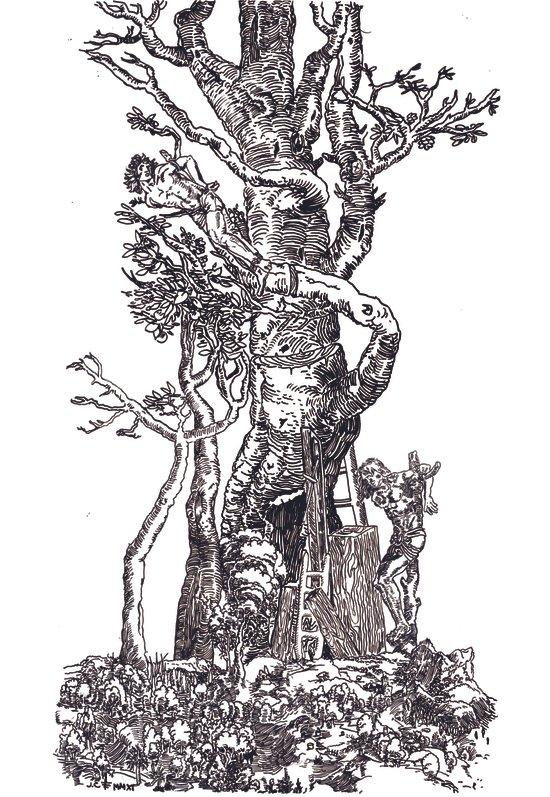 Sacred Tree Art Print