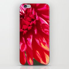 Seeing Red iPhone & iPod Skin