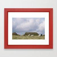 Sheep beside a drystone wall at sunset. Derbyshire, UK. Framed Art Print