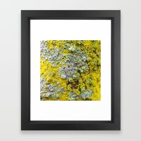 Moss! Framed Art Print