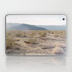 Panamint Valley Coyotes Laptop & iPad Skin