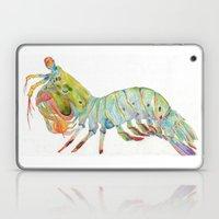 Peacock Mantis Shrimp Laptop & iPad Skin