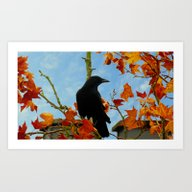 Crow In A Plane Tree Art Print