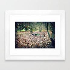 Peacock in the Woods Framed Art Print