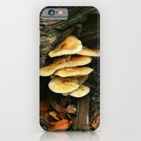 iPhone & iPod Case featuring Lichen - Fungi by Joanna  Pickelsimer