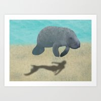 Manatee Shadow Art Print