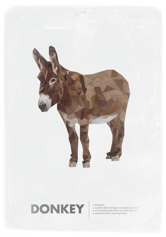 Animal Slang - Donkey Art Print