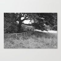 Like A Robert Frost Poem Canvas Print