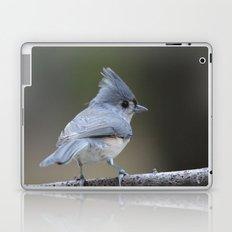 A Tufted Titmouse Laptop & iPad Skin