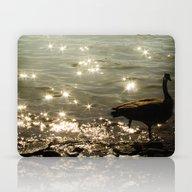 Solitary Moment Laptop & iPad Skin