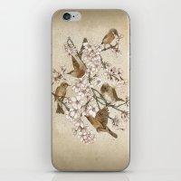 Too many birds iPhone & iPod Skin