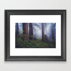 California Red Woods Framed Art Print