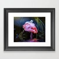 Spoonbill Fandance Framed Art Print
