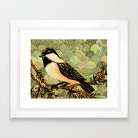 Winged Messenger Framed Art Print