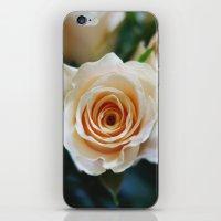 Rose Pattern #2 iPhone & iPod Skin
