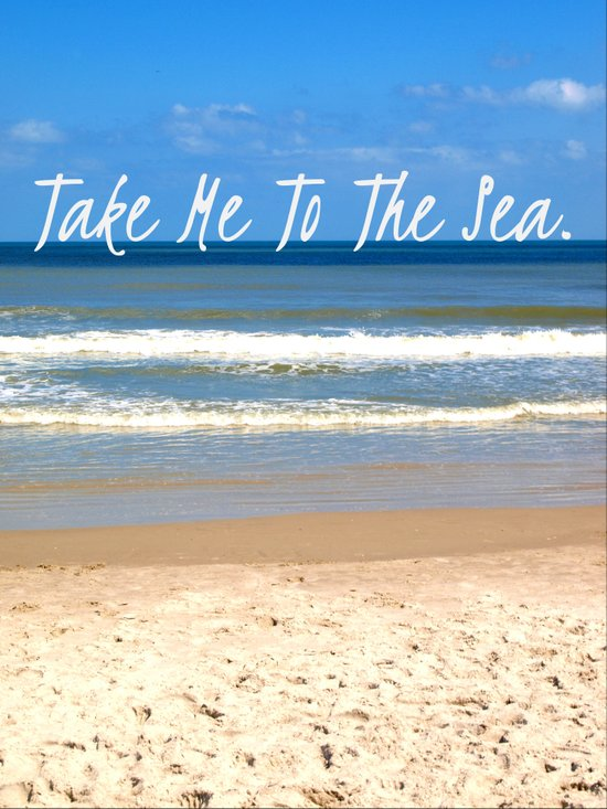 Take Me To The Sea Art Print