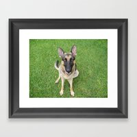 A German Shepherd Smile Framed Art Print