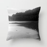 Peace of Swan Lake Throw Pillow