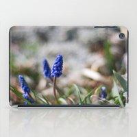 Grape Hyacinth II iPad Case