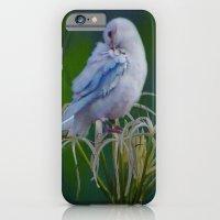 Preen iPhone 6 Slim Case
