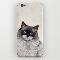 Mr. Ragdoll Cat iPhone & iPod Skin