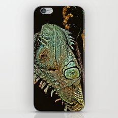 IN THE SCALE OF THINGS iPhone & iPod Skin