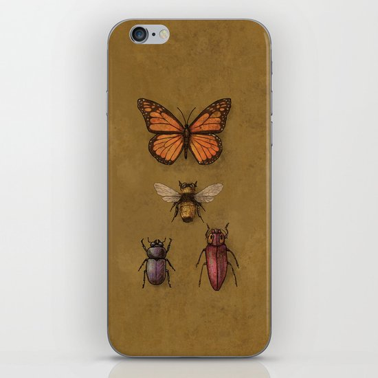 """""""B"""" is for...  iPhone & iPod Skin"""