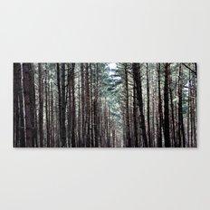 soul howling Canvas Print