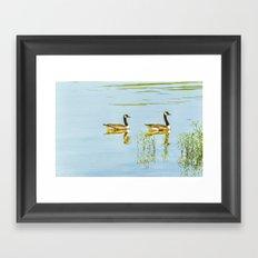 Slow Glide Framed Art Print