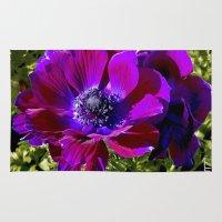 Burgundy Poppy Anemone I Rug