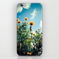 Buzz iPhone & iPod Skin