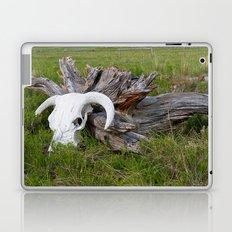 Buffalo skull Laptop & iPad Skin