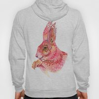 The squirrel magic  Hoody