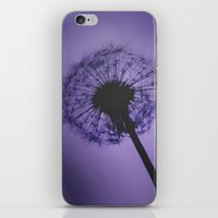 Purple Dandelion iPhone & iPod Skin