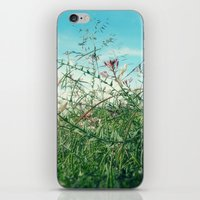 Field Wild Flowers iPhone & iPod Skin