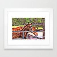 Horses And Gate Framed Art Print