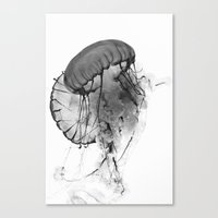 Dancing Jellies Canvas Print