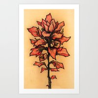 TEXAS PAINTBRUSH  Art Print