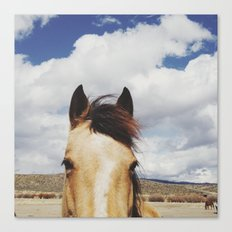 Cloudy Horse Head Canvas Print