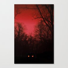 The Woods Canvas Print