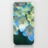 Peek -A- Blue iPhone 6 Slim Case
