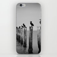 Black And White Birds On… iPhone & iPod Skin