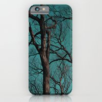 iPhone & iPod Case featuring Looking Up by Charlene McCoy