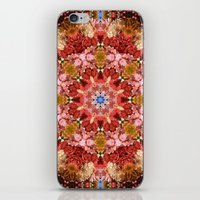 Bohemian Garden iPhone & iPod Skin