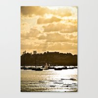 Shining Canvas Print