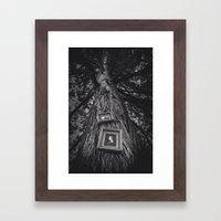 Hanging In Trees - Black… Framed Art Print